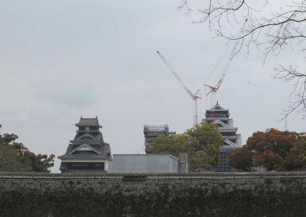 2019年春の熊本城