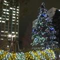 千葉工大津田沼キャンパスのクリスマスツリー