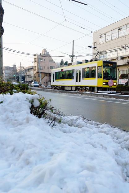 雪の都電荒川線
