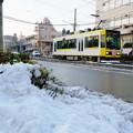 写真: 雪の都電荒川線