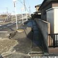 Photos: Miyagi 187