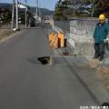 写真: Miyagi 192