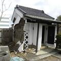 写真: Miyagi 294