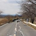 写真: Miyagi 398
