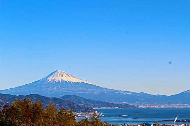 写真: 日本平から