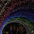 Photos: 光の虹