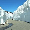 Photos: 雪洞