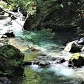 Photos: 滝上流1
