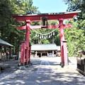 Photos: 王子神社2