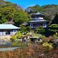 写真: 光明寺記主庭園 #湘南 #鎌倉 #mysky #寺社仏閣
