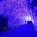 写真: イルミネーショントンネル #湘南 #藤沢 #海 #波 #江ノ島 #enoshima #イルミネーション #バレンタイン