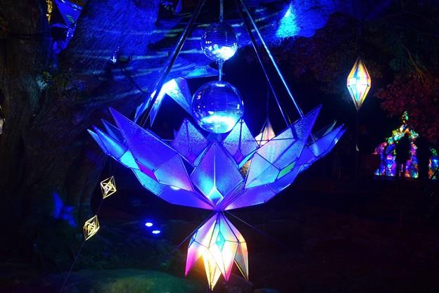 サムエルコッキング苑のミラーボールアート #湘南 #藤沢 #海 #surfing #江ノ島 #イルミネーション #art #illumination