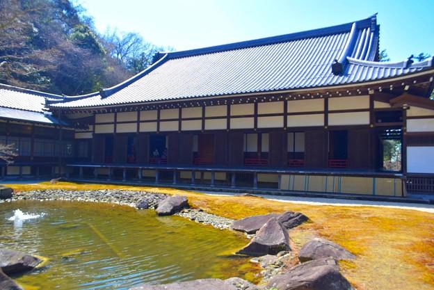 円覚寺方丈と庭園 #湘南 #鎌倉 #kamakura #mysky #寺 #temple
