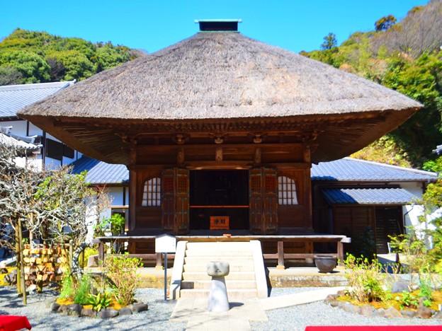 円覚寺佛日庵開基廟 #湘南 #鎌倉 #kamakura #mysky #寺 #temple