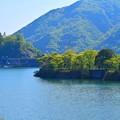 丹沢湖 #丹沢 #山北 #酒匂川 #湖