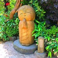 写真: 和み地蔵@長谷寺 #鎌倉 #湘南 #kamakura #寺 #temple #長谷寺