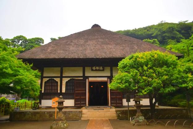 円覚寺選仏場 #鎌倉 #kamakura #湘南 #寺 #temple