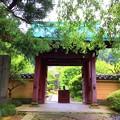 写真: 行時山光則寺 山門 #鎌倉 #湘南 #kamakura #temple