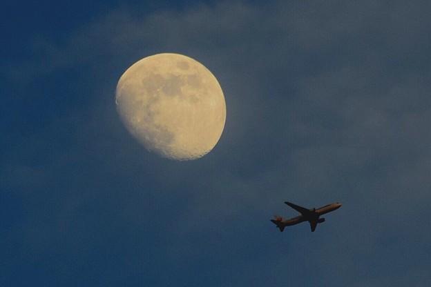 月齢10の月と日航機 #湘南 #藤沢 #海 #波 #wave #surfing #mysky #飛行機 #日本航空 #jal #月 #moon