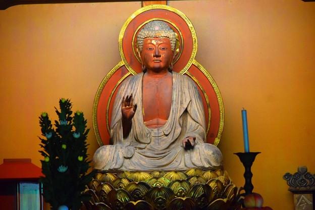 東慶寺本尊 釈迦如来像 #kamakura #鎌倉 #湘南 #寺 #temple