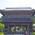 天照山光明寺山門 #鎌倉 #湘南 #kamakura #shonan #寺 #temple