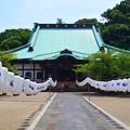 光明寺本堂 #鎌倉 #湘南 #kamakura #shonan #寺 #temple