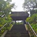 松岡山東慶寺 山門 #湘南 #鎌倉 #寺 #kamakura #temple #mysky
