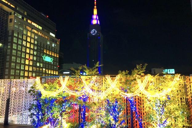 新宿南口のイルミネーション #新宿 #東京 #クリスマス #イルミネーション #shinjuku #christmas #illumination
