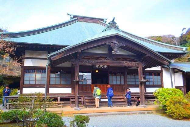 海蔵寺本堂 #湘南 #kamakura #鎌倉 #temple #寺 #mysky
