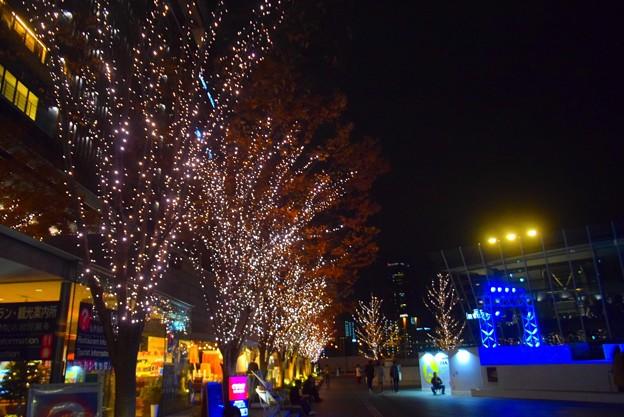 グランフロント大阪のイルミネーション #大阪 #クリスマス #イルミネーション #osaka #illumination #christmas #xmas
