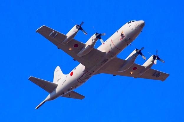 第1空挺団 P-3C哨戒機 #自衛隊 #japanselfdefenceforces #mysky #習志野演習場 #降下訓練始め #japanairforce
