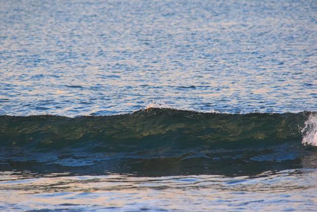 今朝の湘南・鵠沼海岸の波はすねからひざサイズ #湘南 #藤沢 #海 #波 #wave #surfing #mysky #beach