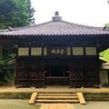 Photos: 浄智寺曇華殿 #湘南 #鎌倉 #kamakura #寺 #temple #花 #flower