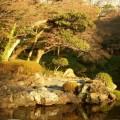 写真: 小石川後楽園4