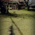 写真: 廃校浪漫.......