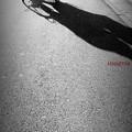 写真: crossing........