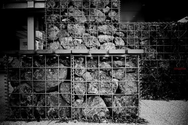 蛇籠......