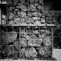 写真: 蛇籠......