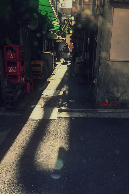 Photos: 脱力日和.......