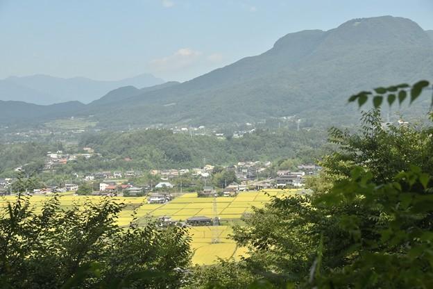 沼田城址公園からの光景