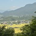 Photos: 沼田城址公園からの光景