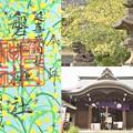 写真: 磐井神社の御朱印(限定)