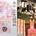 Photos: 太子堂八幡神社の御朱印(11月)