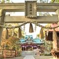 Photos: 多摩川浅間神社(11月)