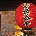 Photos: 長谷寺にて