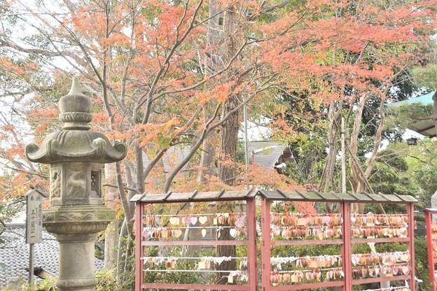多摩川浅間神社(12月)