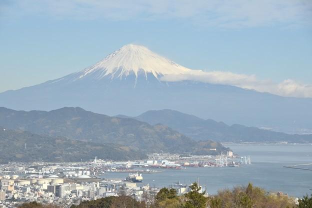 日本平夢テラス 富士山