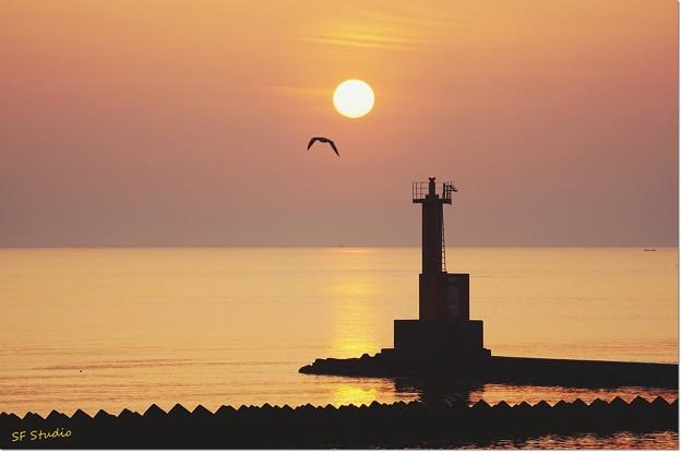 Photos: キラ海