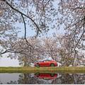 Photos: 2018 春速