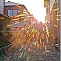 写真: 夕陽花火